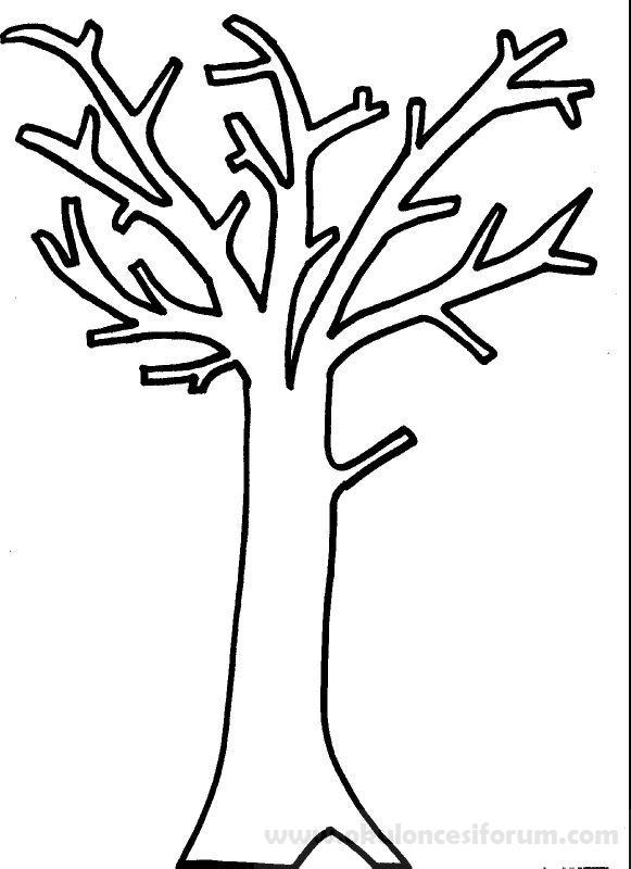 çeşit çeşit Ağaçlar Okul öncesi Etkinlikleri