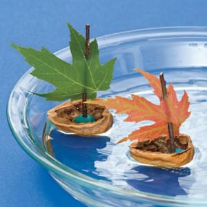 nutty-boats-autumn-craft-photo-420-FF1010CREATA07