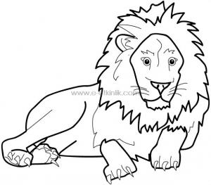 aslan boyamaa