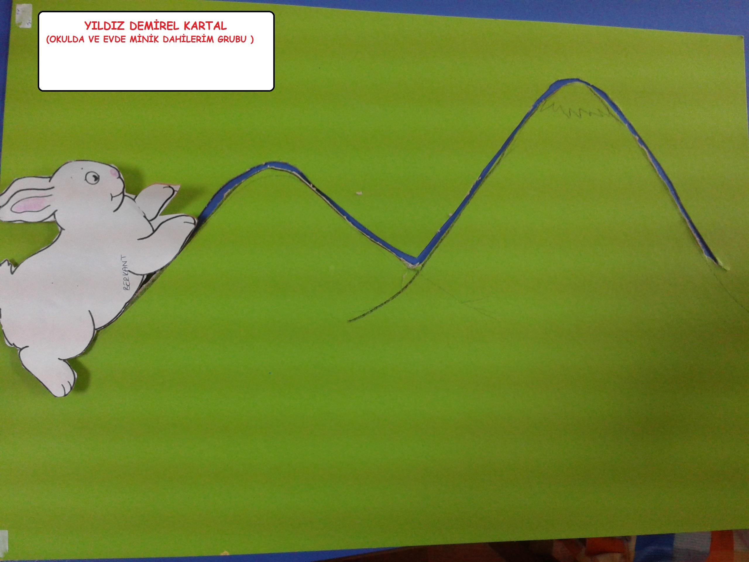 hızlı tavşan yavaş kaplımbağa etkinliği (2)