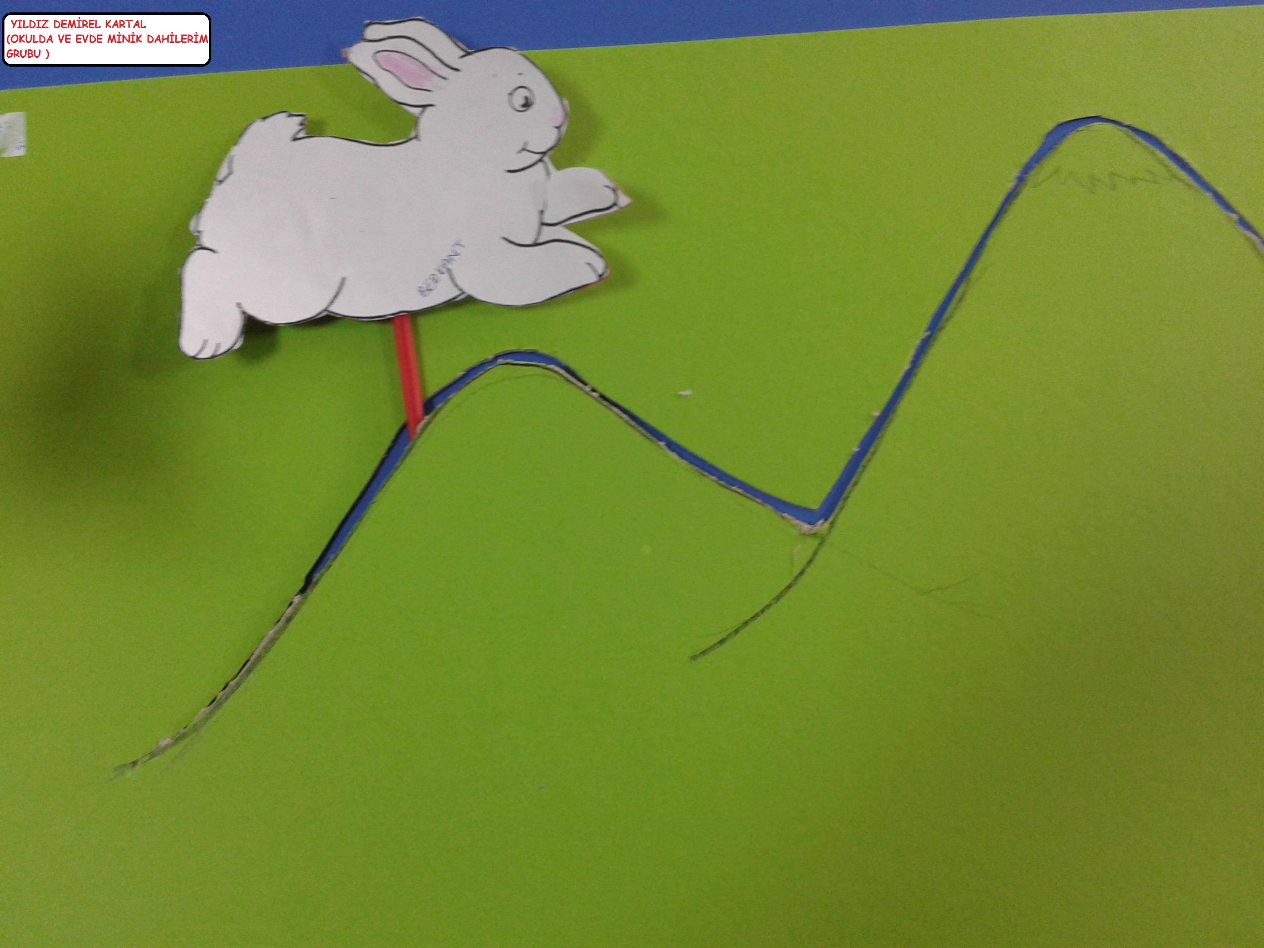 hızlı tavşan yavaş kaplımbağa etkinliği (3)