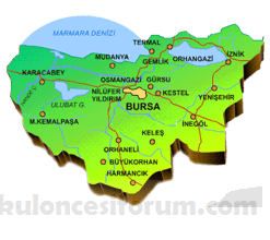 bursa_harita