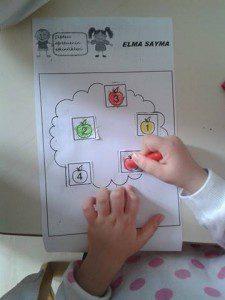 elma sayma 4