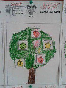 elma sayma 6