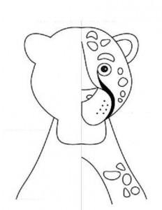 simetri çalışması hayvanlar 12