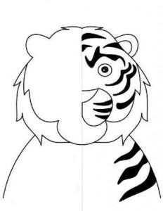 simetri çalışması hayvanlar 13