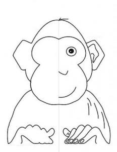 simetri çalışması hayvanlar 14
