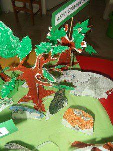 dünya ormanları 6