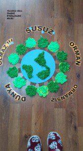 orman haftası ,bitki canlılar,erozyon (9)