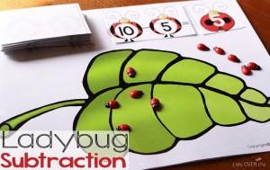 uğurböceği çıkarma 4