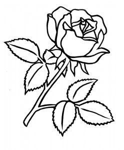 Tattoo 3.tif