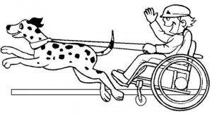 engellilerhaftası 14