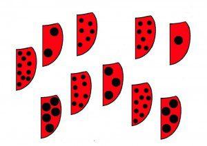 ugur-bocegi-eslestirme-kartlari-2