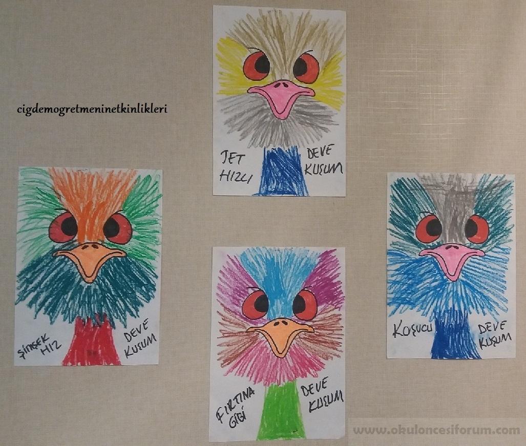 Koşucu Deve Kuşu Emu Okul öncesi Etkinlikleri