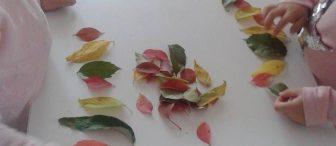 Yapraklardan örüntü çalışması