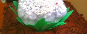Karnıbahar Yapmışlar:)