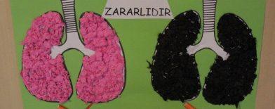 Akciğer Boyama Arşivleri Okul öncesi Etkinlikleri