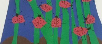 Çimlerde gezen uğurböcekleri
