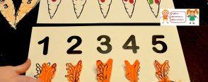 Havuç sayı eşleştirme